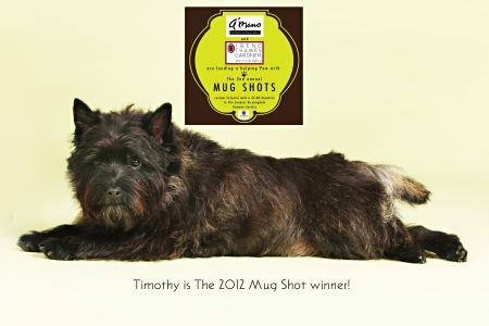 2012 Mug Shot winner