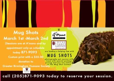 email blast for Mug Shots 2013 copy1