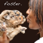 foster_care